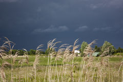 Storm komst Stock Afbeelding