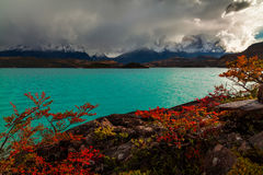 Storm on Lake Pehoe in the autumn. Torres del Paine, Argentina Royalty Free Stock Image