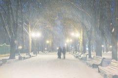 Storm in Mariinsky Park Royalty Free Stock Photo