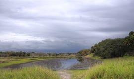 Storm Myakka floddelstatspark, Florida Arkivbild