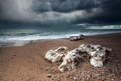 Storm over Atlantic ocean coast Stock Photography