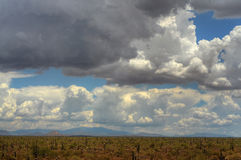 Storm over the Desert Royalty Free Stock Image