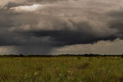 Storm Over the Everglades Stock Photography