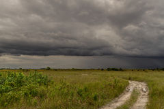 Storm Over the Everglades Stock Image