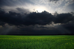Storm over the field Stock Images