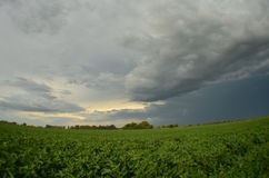 Storm over field Stock Photo