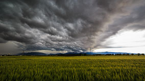 Storm over the fields Stock Photography