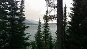 A Storm Over Jenny Lake Through the Trees. A storm brewing over Jenny Lake while looking through the trees in Grand Tetons National Park Royalty Free Stock Image