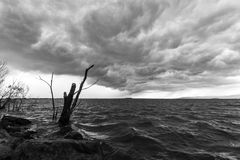 Storm over the lake. Some spectacular and menacing clouds over a lake, with some trees, trunks and rocks in the foreground royalty free stock photography