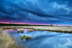 Storm over swamp at sunset Stock Photography