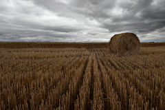 Storm over wheatfields. Stormy clouds rolling in over a wheat field Stock Images
