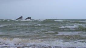 Storm på havkusten stock video