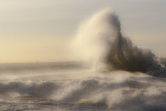 Storm Patrick. One of the biggest storms what hit Baltic's and Scandinavia Royalty Free Stock Photo