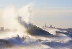 Storm Patrick Royalty Free Stock Photo