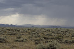 Storm on Plains. A dense storm moves over the plains of Wyoming Stock Photo