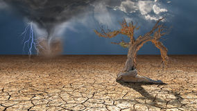 Storm rages in desert Royalty Free Stock Images