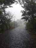 Storm in a rainy street of mountain city in Central America. Cuetzalan in a stormy day with trees, few local people and white and in Oaxaca mountain ridge close Stock Photos