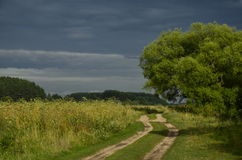 Before the storm. Road before the storm along the willow Royalty Free Stock Photos