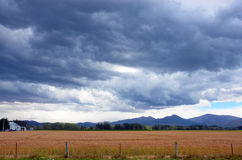 Storm rolling in over farmland. Ominous storm clouds rolling in over crops planted rural farmland stock photos