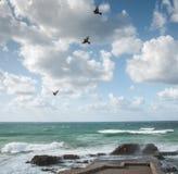 Storm. On sea Royalty Free Stock Photo