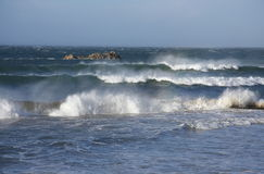 Storm at sea. Rows of large waves with lots af spray Royalty Free Stock Photo