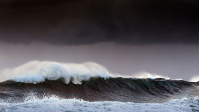 Storm in the sea with big waves Royalty Free Stock Images