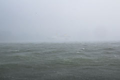 Storm on the sea with rain downpour Stock Image