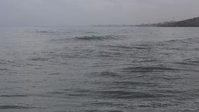 Storm on the sea and swimmer in the waves. stock video footage
