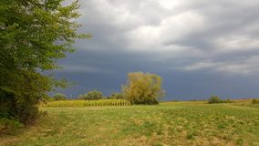Storm som kommer över fält Arkivbild