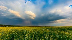 Storm in steppe Stock Images