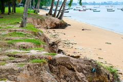 Storm surge coastal waves hazards and damage to sidewalks roads and real estate. Storm surge coastal waves coconut tree, concept Hazards and damage to sidewalks royalty free stock photos