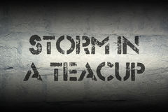Storm in teacup gr Royalty Free Stock Photo