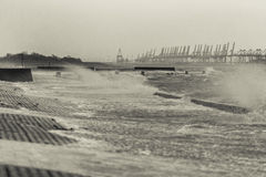 Storm tide North Sea Stock Images