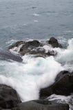 Storm. Vinkar, och havet skummar. Arkivfoto