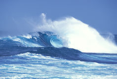 Storm Wave 1. A beautiful storm wave in Hawaii Royalty Free Stock Images
