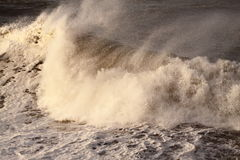 Storm wave A Stock Photography