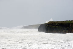 Storm waves at Ballybunion cliffs Royalty Free Stock Photos