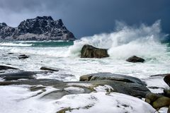 Storm waves on the beach in Lofoten Archipelago, Norway in the winter time, water reflexion in Hamnoy. Storm on the beach in  Lofoten Archipelago , Norway in the Royalty Free Stock Photos