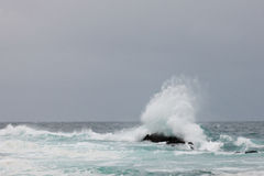 Storm waves breaking at Tsitsikamma National Park Royalty Free Stock Image