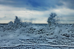 Storm waves at sea Stock Photography