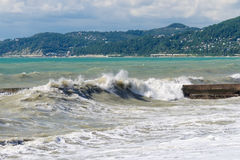 Storm waves on the sea shallows Royalty Free Stock Photo