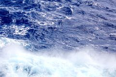 Storm waves in the world ocean. Kind of waves, crests, splashes, foam against the background of the sea and blue sky. Storm waves in the world ocean. Kind of stock photo