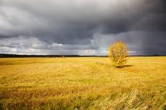 Storm weather Stock Photo