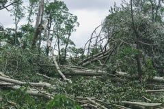 Storma följder i staden av Minsk 13 07 16 royaltyfri fotografi