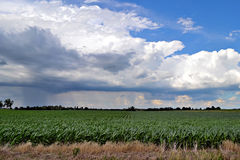 Stormachtig gebied Royalty-vrije Stock Foto's
