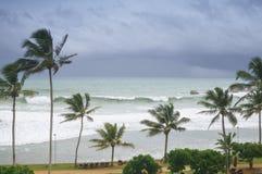 Stormachtig tropisch strand royalty-vrije stock afbeelding