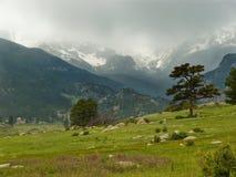 Stormachtige Bergweide Royalty-vrije Stock Foto