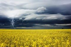 Stormachtige dag royalty-vrije stock afbeeldingen