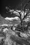 Stormachtige Dag dichtbij Abique Royalty-vrije Stock Afbeeldingen