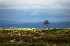 Stormachtige dag op de berg Stock Fotografie